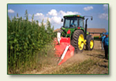 Federal - US - Congress - Support The Industrial Hemp Farming Act of 2011